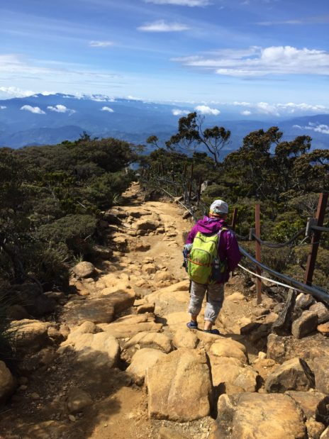 キナバル山3,000m地帯②