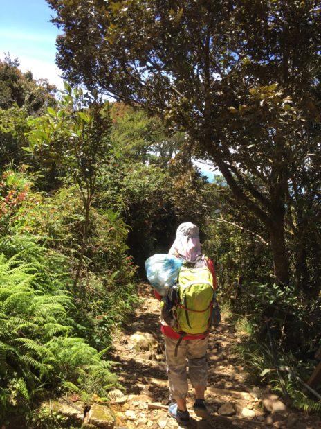 キナバル山3,000m地帯