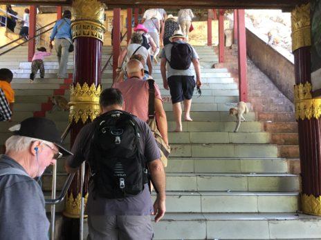 ポッパ山広場の階段