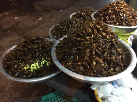 山盛りの虫料理